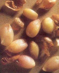 sweet and sour shallots