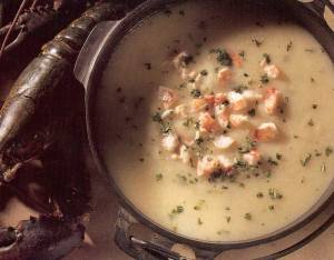 fennel soup with lobster
