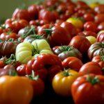 The History of Italian Cuisine III