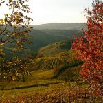 Five places to visit in Italy during the Fall