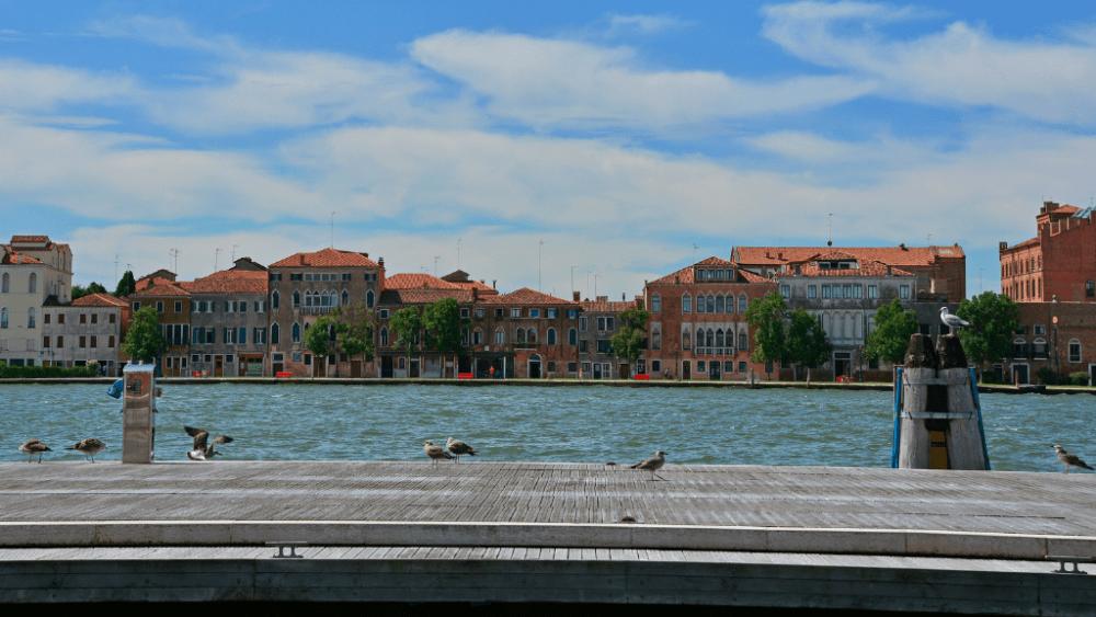 giudecca canal